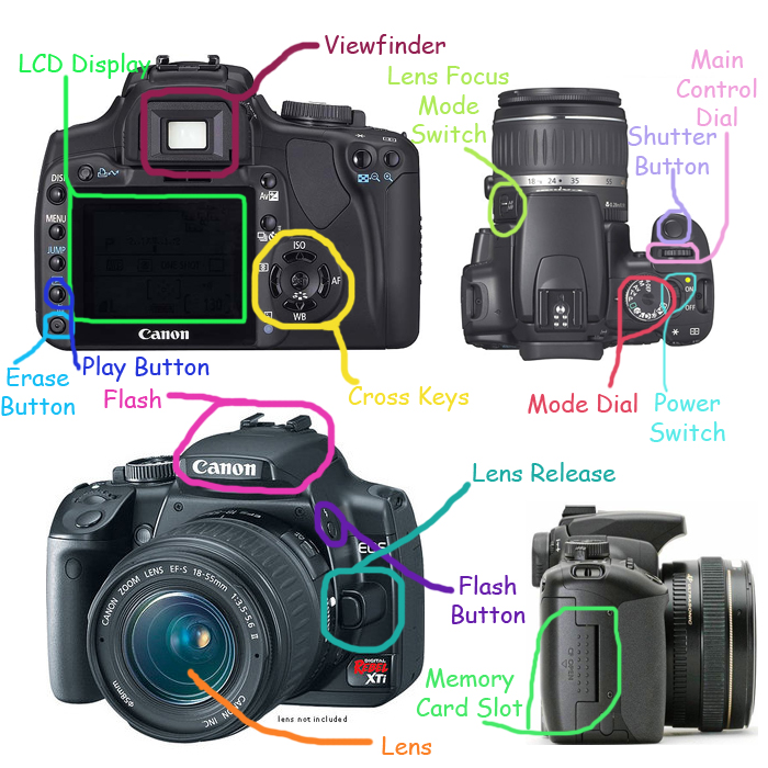 Labeled Slr Camera Parts And Controls